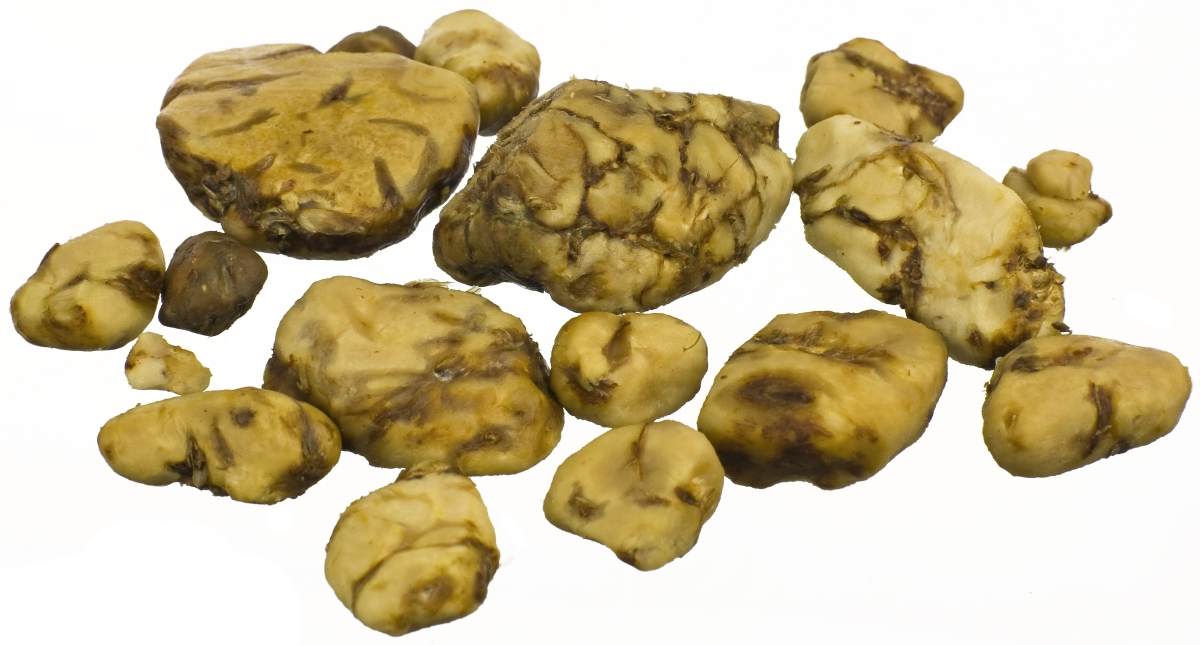 how to grow truffles in tasmania